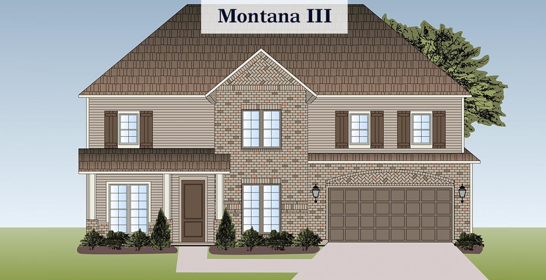 Montana 3