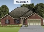 Magnolia-A
